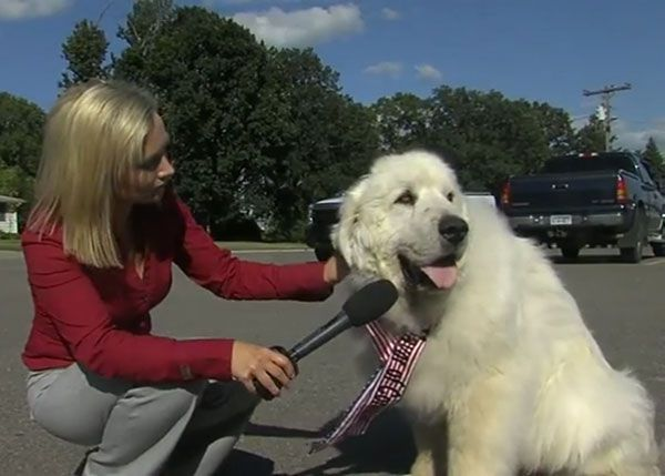 Duke showed a distinct lack of interest in his first interview as Mayor. (Screenshot: WDAY)