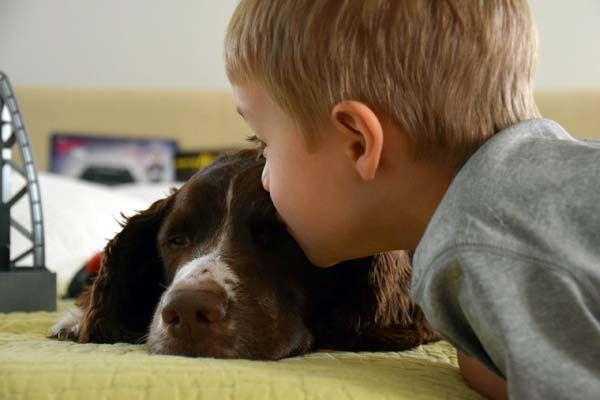 Grissom, now five years old, takes a break from his toys to give Charlie, now seven, a little love.