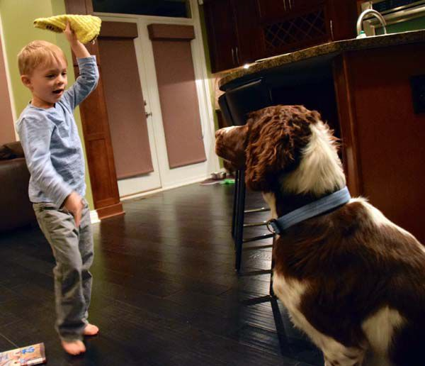 """Grissom, then four years old, puts Charlie, six years old, in a sit-stay before playing a game of """"Find It."""""""