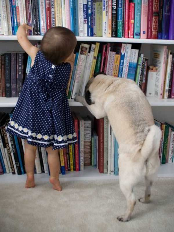 My daughter and our Pug, exploring together.