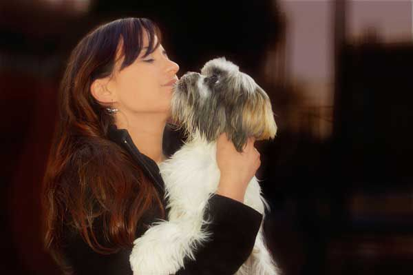 Lhasa Apso with owner