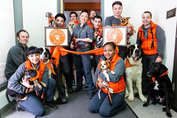 The Dog City staff at Abington House, where there are already 100 pooches in the building. (Photo by Tyson Reist.)