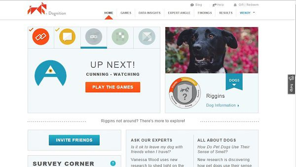 Riggins Dognition home page.