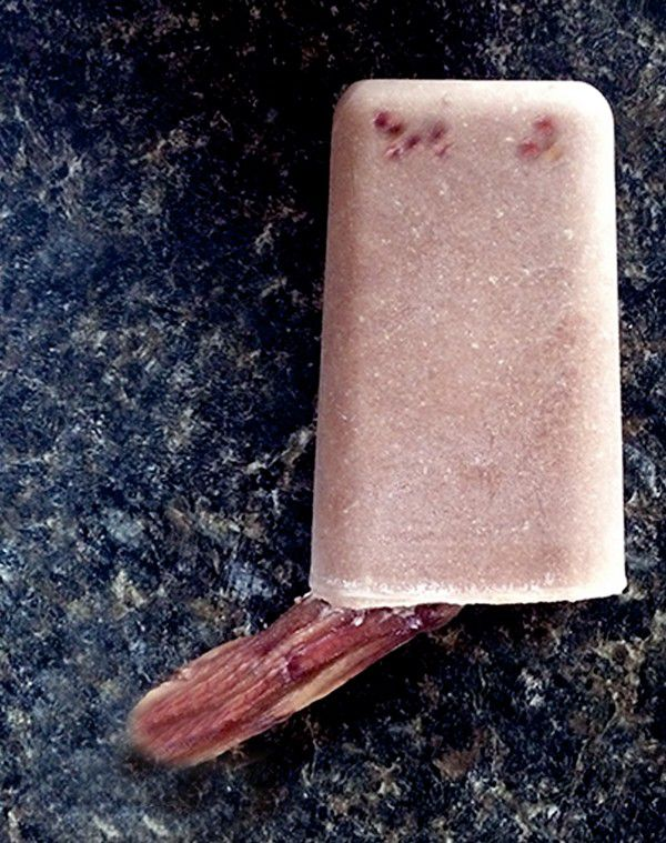 Pupsicles are an easy-to-make summer treat for pooches of any age. (Photo by Marybeth Bittel)