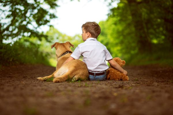 A boy sitting with his two dogs. Image via Shutterstock.