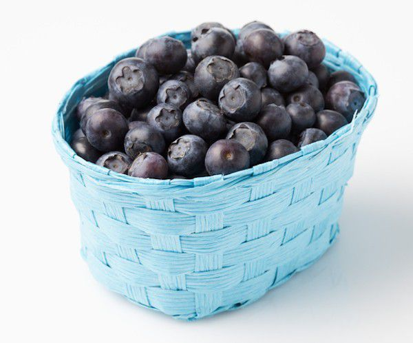What dog doesn't love blueberries? They are ball-shaped, after all. (Blueberries by Shutterstock)