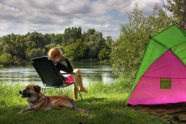 A dog and a person camping.
