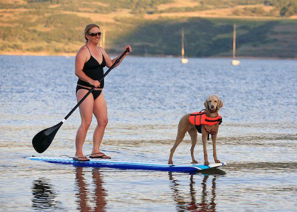 (Woman and dog paddleboarding by Shutterstock)
