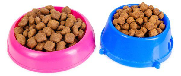 Dog food bowls by Shutterstock.