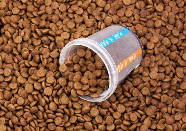Measuring cup in dog food by Shutterstock.