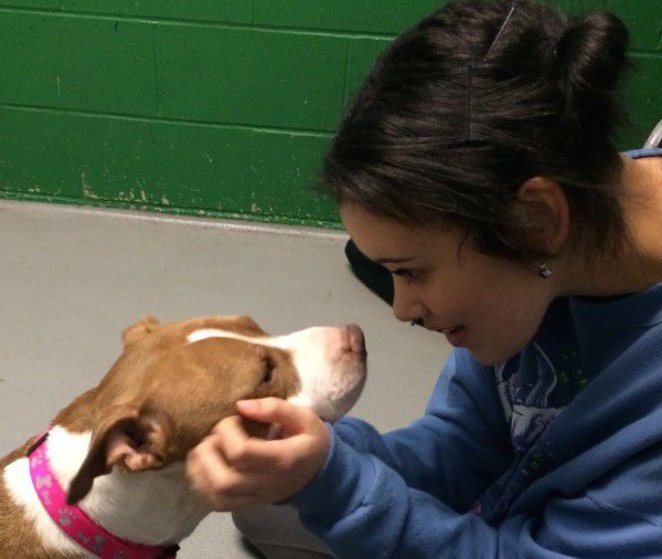 My daughter Zinnia Willingham with a pit bull named Lavendar that we visited in a shelter. Photo by Kezia Willingham.