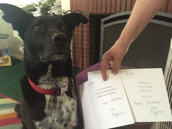 Riggins' Halloween cards to his cousins. (Photo by Wendy Newell)