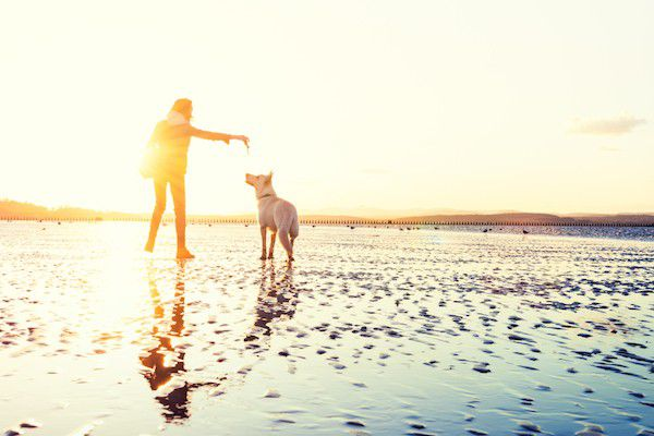 Woman playing with dog by Shutterstock.