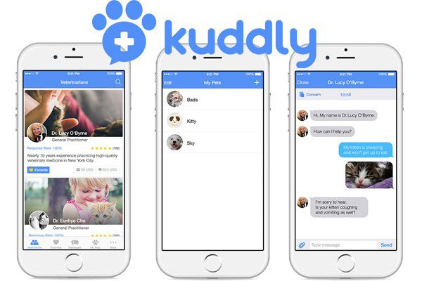 Kuddly offers advice directly from veterinarians 24/7.