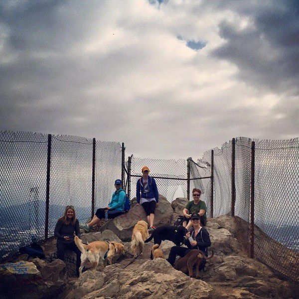 Fun with friends and their dogs at Bee Rock in Griffith Park.