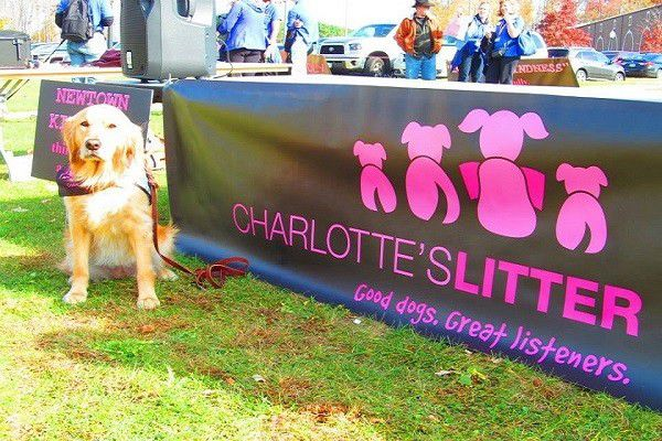 Through Charlotte's Litter, the Bacon Family advocates for therapy dogs in educational settings. Photo provided.