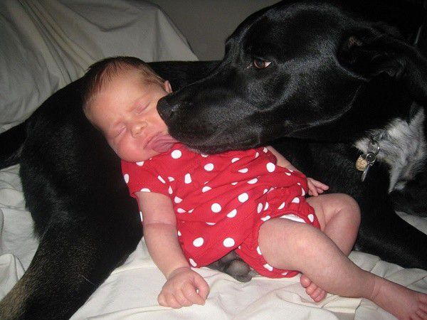 The start of Riggins' love affair with my niece. (Photo by Wendy Newell)