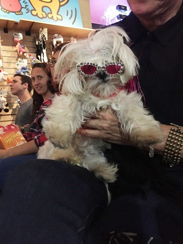 Olivia prefers not to be recognized so has to wear her sunglasses when she watches the show (photo by Wendy Newell)