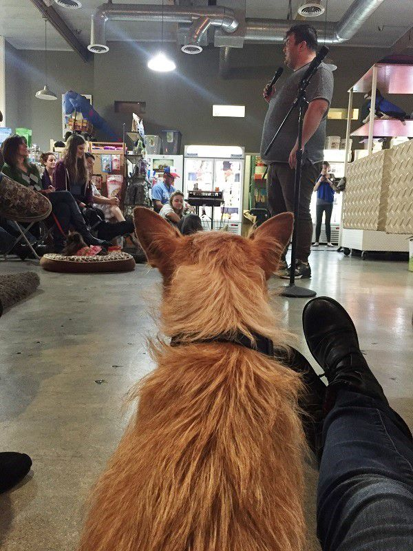 I sit on the floor and snuggle close to a pup during Ian Karmel's set. (Photo by Wendy Newell)