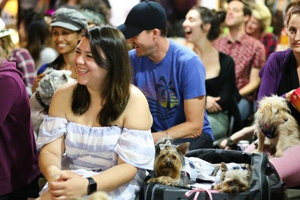 Humans and dogs laugh together at the 2 Girls 1 Pup live show (photo by Rebecca Aranda Photography)