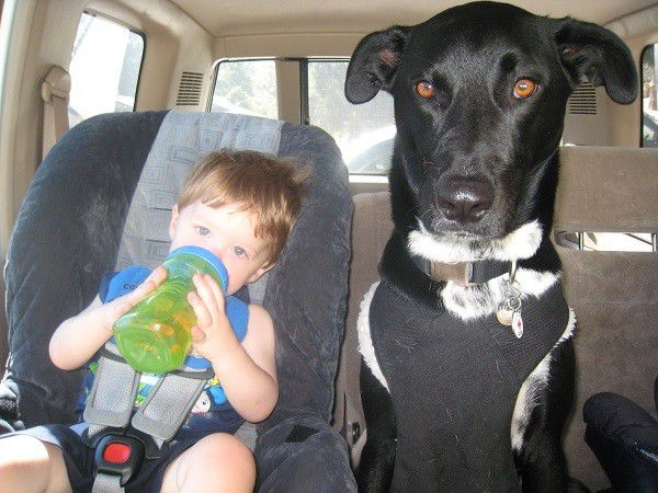 My sister's baby and my baby share the backseat ready for a road trip. (Photo by Wendy Newell)