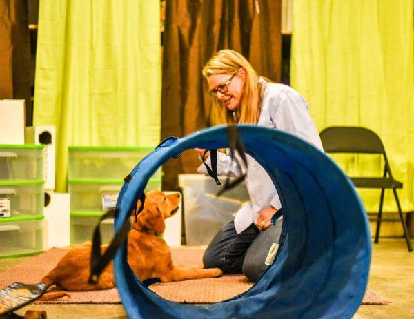 Annie working with a dog on an agility course. Photo Credit: Tica Clarke Photography