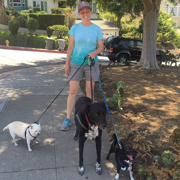 Riggins on a walk with Kris, Fredo and Louie. (Photo by Wendy Newell)