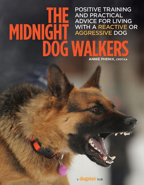 midnight dog walkers