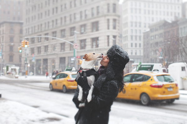 A woman getting kissed by a dog on a snowy New York City street.