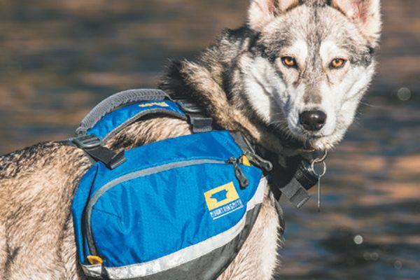 Mountainsmith Dog Pack.