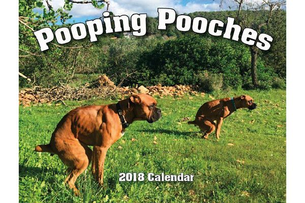 Pooping Pooches.