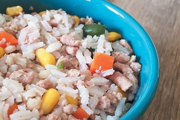 Dog-friendly Turkey-Rice Casserole.
