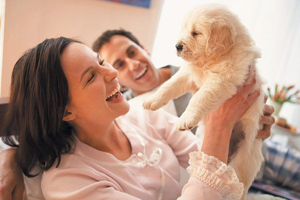 A smiling couple holding up a puppy.