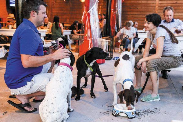 Pups on the Patio events mix pizza, pups & rescues.