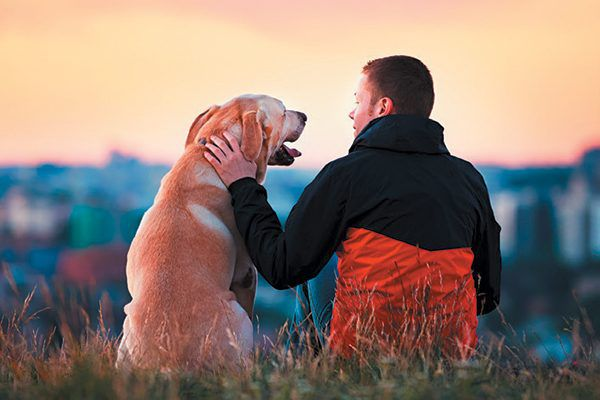A dog and a man looking at each other lovingly.