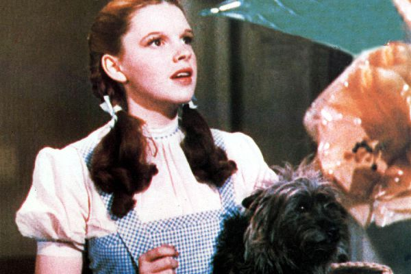 Toto in the Wizard of Oz.