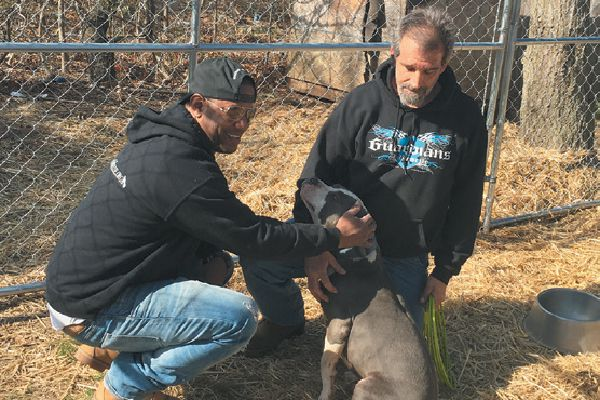 Guardians of Rescue has 400 volunteers across the country improving dogs' lives and helping pets and their owners during natural disasters.