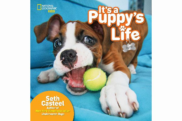 Seth's new book, t's a Puppy's Life.