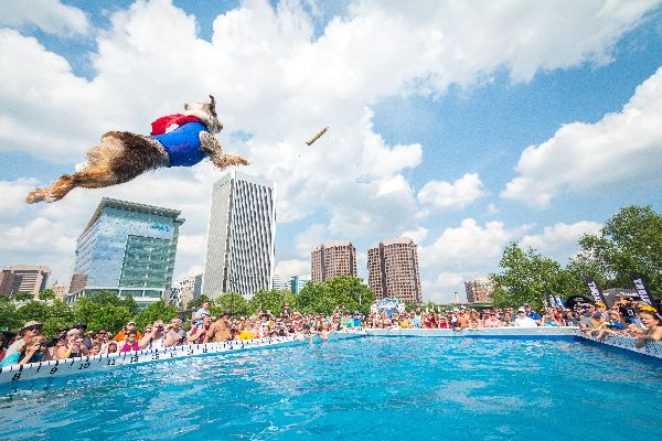 Photography by Jason Hicks, Courtesy Subaru Ultimate Air Dogs Competition.