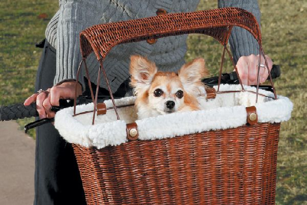 Find the Tres Cool Wicker Tagalong Pet Bicycle Basket at petsafe.com.
