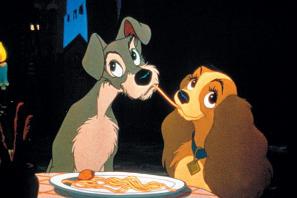 You might recognize this Miniature Schnauzer from Disney's Lady and the Tramp. Photography ©adogslifephoto   Getty Images.