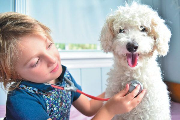 Talk to your vet about the proper vaccination schedule for your puppy. Photography ©Lisa5201 | Getty Images.
