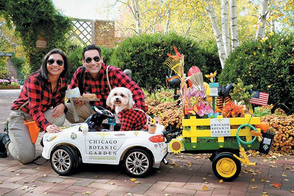 Bella, a Shi Tzu- Pomeranian mix, rolled away with the prize for Best Senior at the Spooky Pooch Parade, with a horticulture theme perfect for the venue!