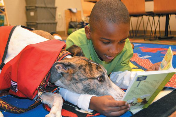 You can get your kids involved in volunteering too. Photography Courtesy Intermountain Therapy Animals.