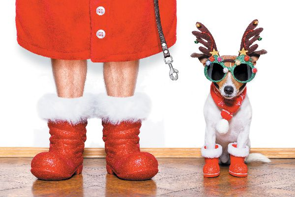 Dog in holiday reindeer outfit with Santa.
