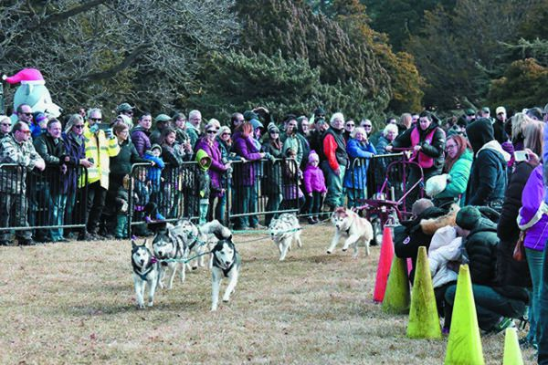 The 17th Husky Heroes dog event takes place at the Morton Arboretum in Lisle, Illinois.