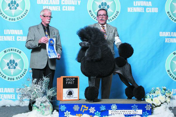 Be sure to check out the Michigan Winter Dog Classic — Michigan's largest dog show, with 7,000 dogs representing 170 breeds in Novi, Michigan.