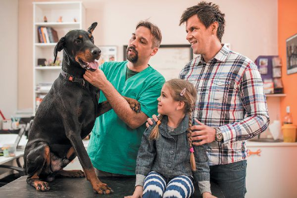 A family and a dog at the vet.