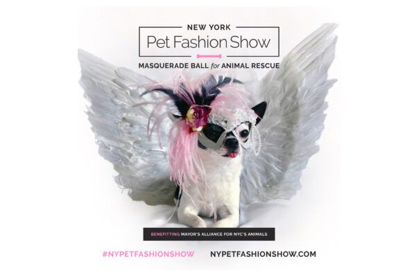 Don't miss the New York Pet Fashion Show Masquerade Ball for Animal Rescue this February 7th at the Hotel Pennsylvania in New York City.