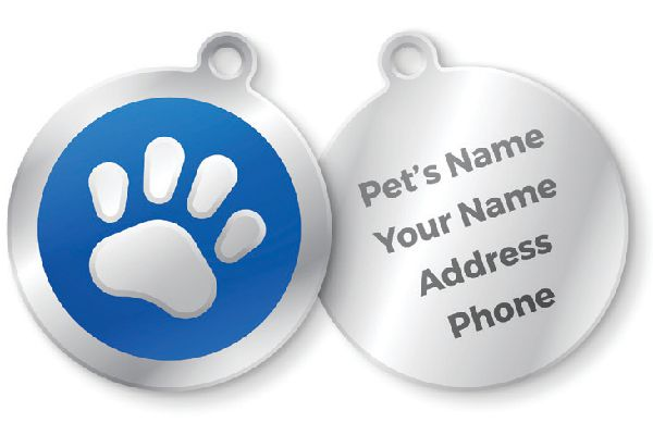 Dog ID tags. Photography ©filo   Getty Images.